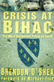 Cover of: Crisis at Bihać