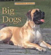 Cover of: Big Dogs (Perfect Pets)