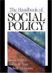 Cover of: The Handbook of Social Policy |