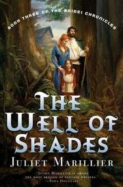 Cover of: The Well of Shades (Bridei Chronicles)
