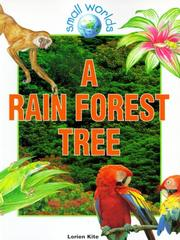 Cover of: A rain forest tree