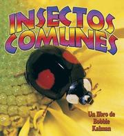 Cover of: Insectos comunes