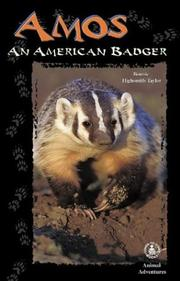 Cover of: Amos: An American Badger (Cover-to-Cover Chapter Books: Animal Adv.-Land)