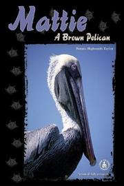 Cover of: Mattie: A Brown Pelican (Cover-to-Cover Chapter Books: Animal Adv.-Air)