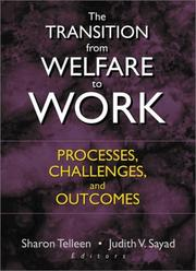 Cover of: The Transition from Welfare to Work |