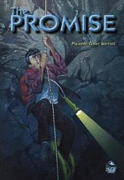 Cover of: Promise (Summit Books) | Maureen Crane Wartski