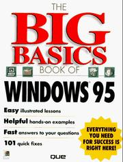 Cover of: The big basics book of Windows 95