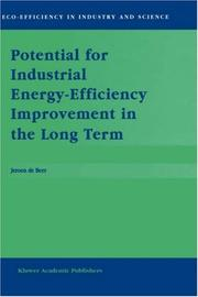 Cover of: Potential for Industrial Energy-Efficiency Improvement in the Long Term | J. de Beer