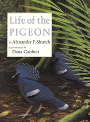 Cover of: Life of the pigeon