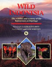 Cover of: Wild Indonesia