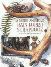 Cover of: North American Rain Forest Scrapbook
