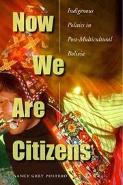 Cover of: Now We Are Citizens