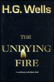 Cover of: The undying fire: a contemporary novel