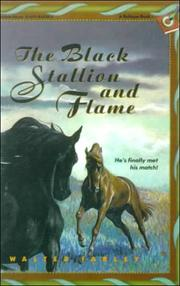Cover of: The Black Stallion and Flame (Black Stallion)