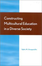 Cover of: Constructing Multicultural Education in a Diverse Society | Ilghiz M. Sinagatullin