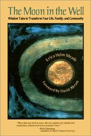 Cover of: The Moon in the Well | Erica Helm Meade