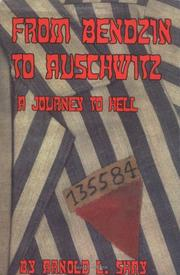 Cover of: From Bendzin to Auschwitz
