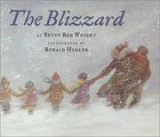 Cover of: The blizzard