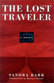 Cover of: The lost traveler