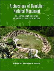 Cover of: Archaeology of Bandelier National Monument |