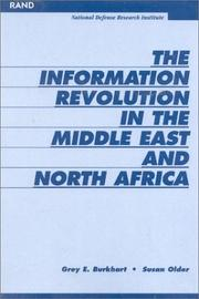 Cover of: The Information Revoultion in the Middle EAst and North Africa | Grey Burkhart