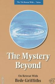 Cover of: The Mystery Beyond (Medio Media)