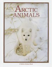 Cover of: Arctic Animals