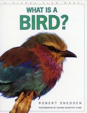 Cover of: What is a Bird? (What is)