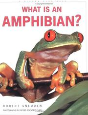 Cover of: What Is an Amphibian? (What is)