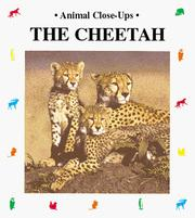 Cover of: The cheetah | Philippe Dupont
