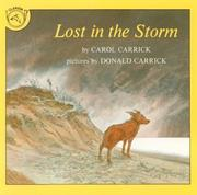 Cover of: Lost in the Storm