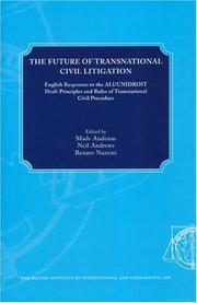 Cover of: The Future Of Transnational Civil Litigation |