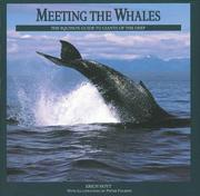 Cover of: Meeting the Whales | Erich Hoyt