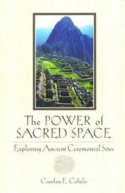 Cover of: The Power of Sacred Space