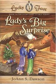 Cover of: Lady's Big Surprise