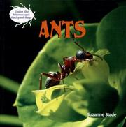 Cover of: Ants (Under the Microscope: Backyard Bugs)