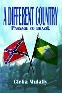 Cover of: A Different Country