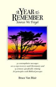 A Year to Remember by Bruce Van Blair