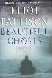 Cover of: Beautiful ghosts