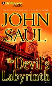Cover of: Devil's Labyrinth, The: A Novel