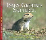 Cover of: BABY GROUND SQUIRREL | Aubrey Lang