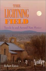 Cover of: The lightning field