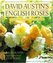 Cover of: English roses