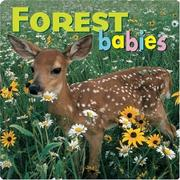 Cover of: Forest Babies