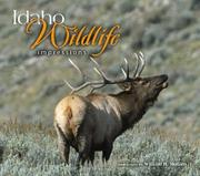 Cover of: Idaho Wildlife Impressions (Impressions (Farcountry Press))