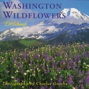 Washington wildflowers