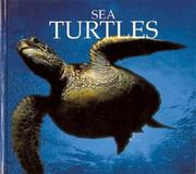 Cover of: Sea turtles | Don Patton