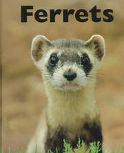 Cover of: Ferrets | Mary Berendes