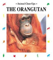 Cover of: The Orangutan | Christine Sourd