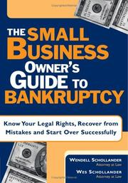 Cover of: The small business owner